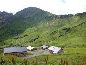 Alpe Zafern